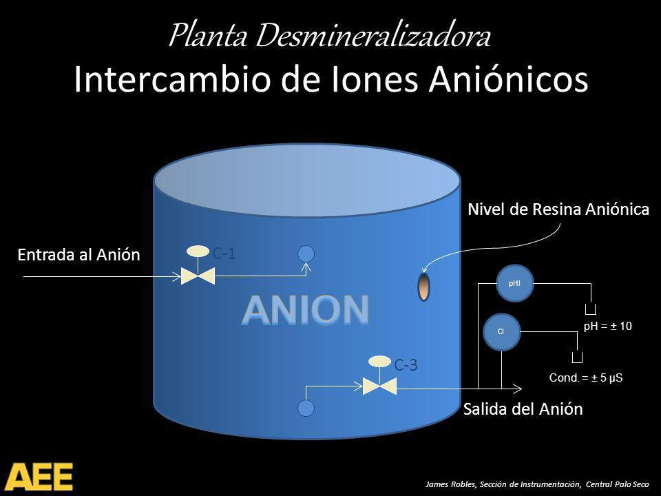 Intercambio de Iones Aniónicos