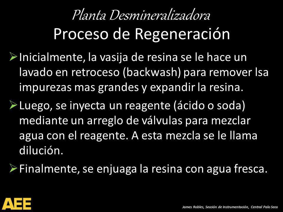 Proceso de Regeneración