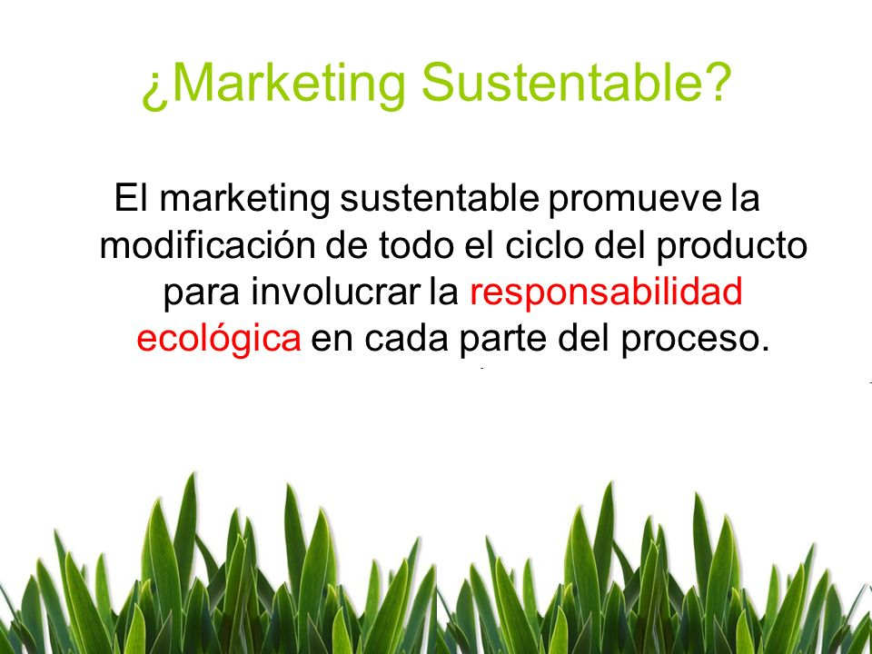 ¿Marketing Sustentable
