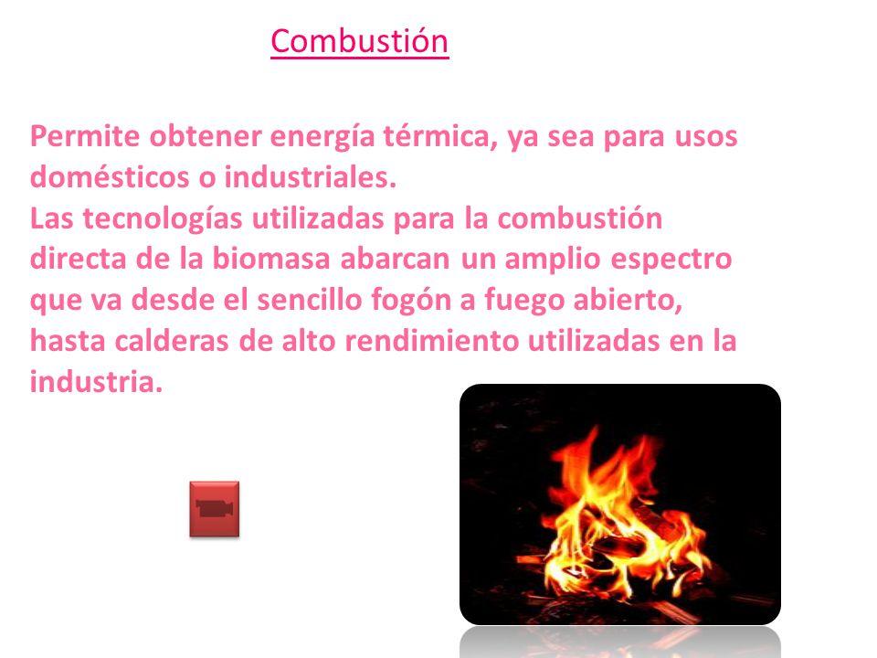 Combustión Permite obtener energía térmica, ya sea para usos domésticos o industriales.
