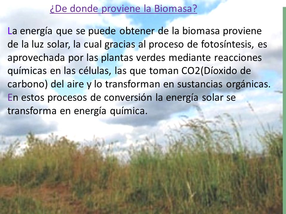 ¿De donde proviene la Biomasa