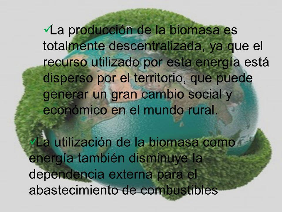 La producción de la biomasa es totalmente descentralizada, ya que el recurso utilizado por esta energía está disperso por el territorio, que puede generar un gran cambio social y económico en el mundo rural.