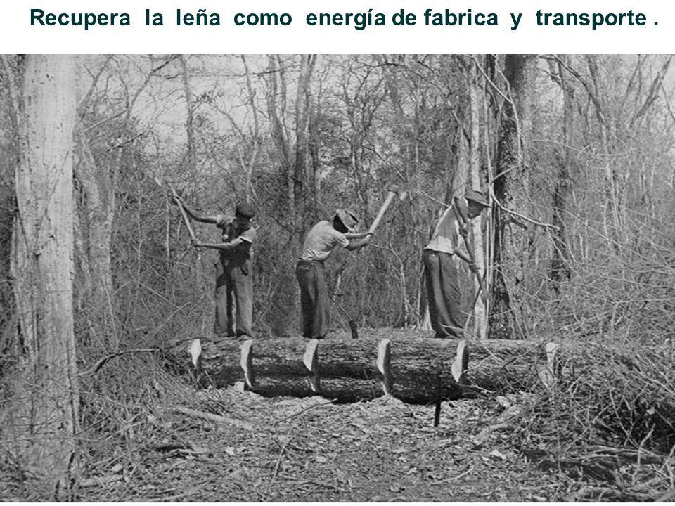 Recupera la leña como energía de fabrica y transporte .