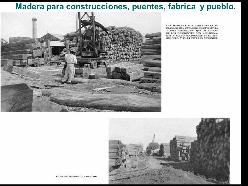 Madera para construcciones, puentes, fabrica y pueblo.