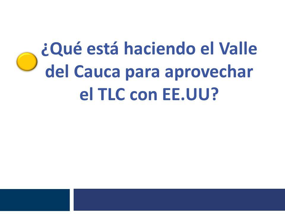 ¿Qué está haciendo el Valle del Cauca para aprovechar el TLC con EE.UU