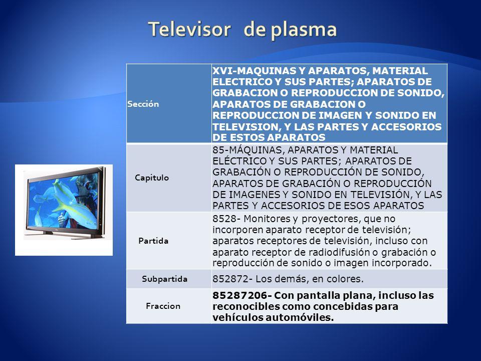 Televisor de plasma Sección
