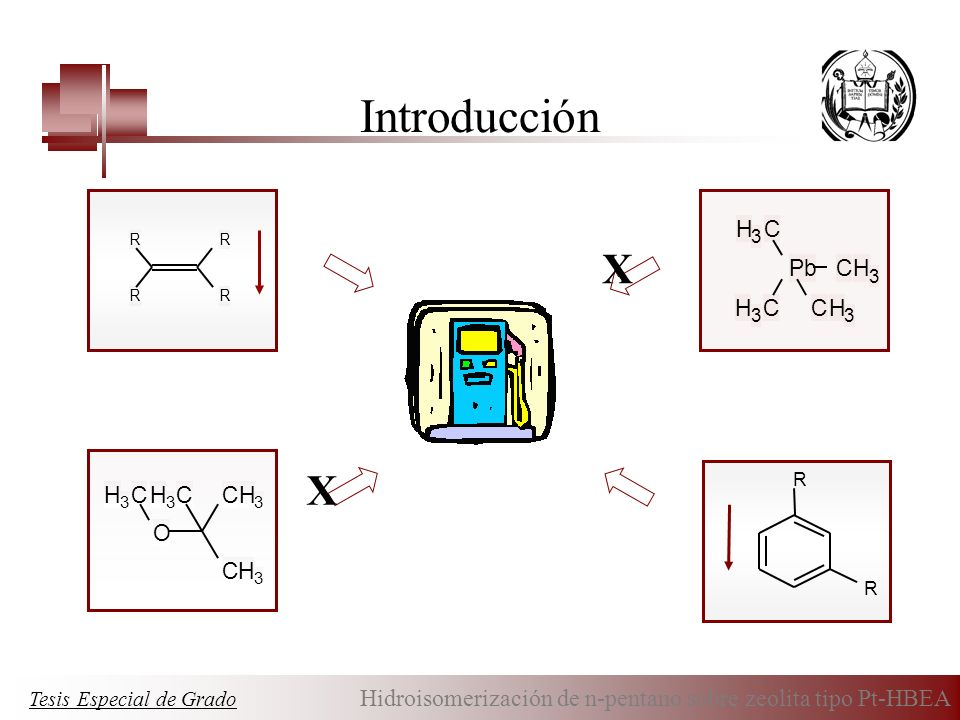 Introducción X X Pb C H O C H