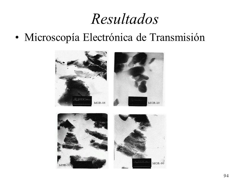 Resultados Microscopía Electrónica de Transmisión