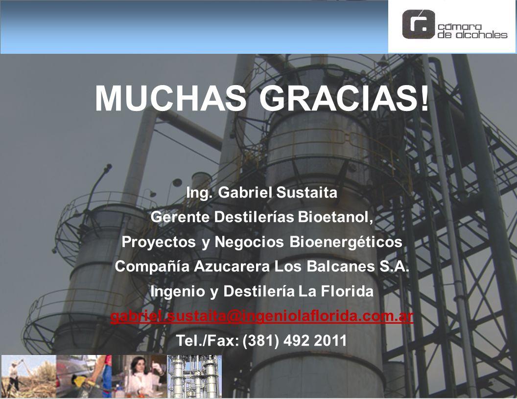 MUCHAS GRACIAS! Ing. Gabriel Sustaita Gerente Destilerías Bioetanol,