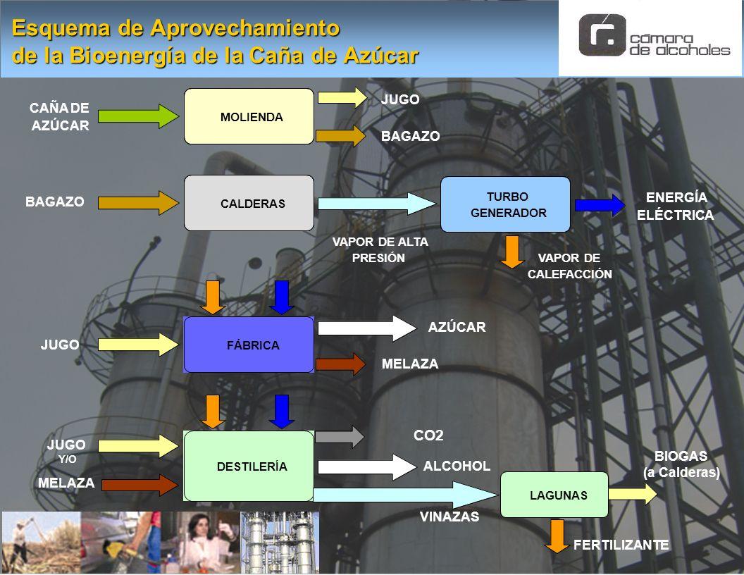 Esquema de Aprovechamiento de la Bioenergía de la Caña de Azúcar