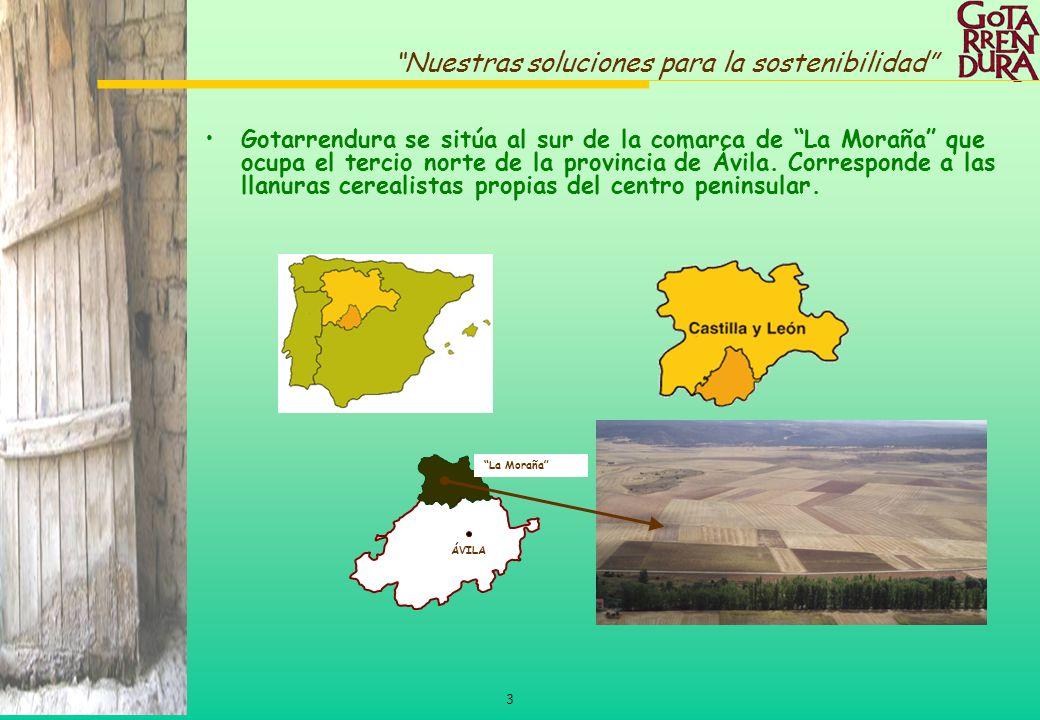 Gotarrendura se sitúa al sur de la comarca de La Moraña que ocupa el tercio norte de la provincia de Ávila. Corresponde a las llanuras cerealistas propias del centro peninsular.