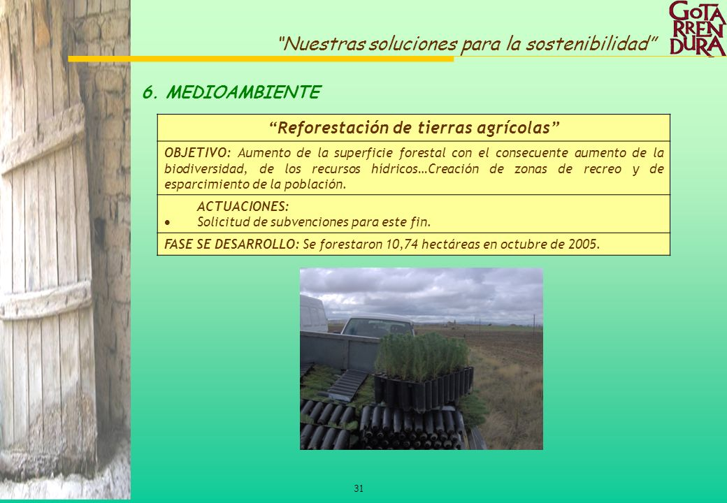 Reforestación de tierras agrícolas