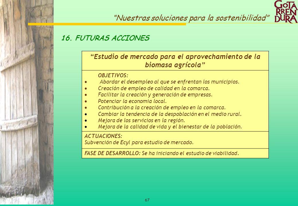 Estudio de mercado para el aprovechamiento de la biomasa agrícola