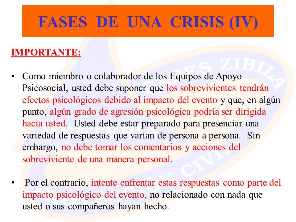 FASES DE UNA CRISIS (IV)