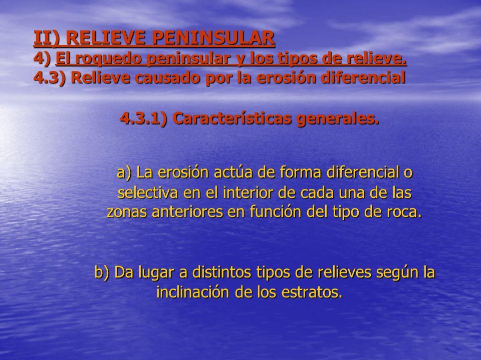 4.3.1) Características generales.