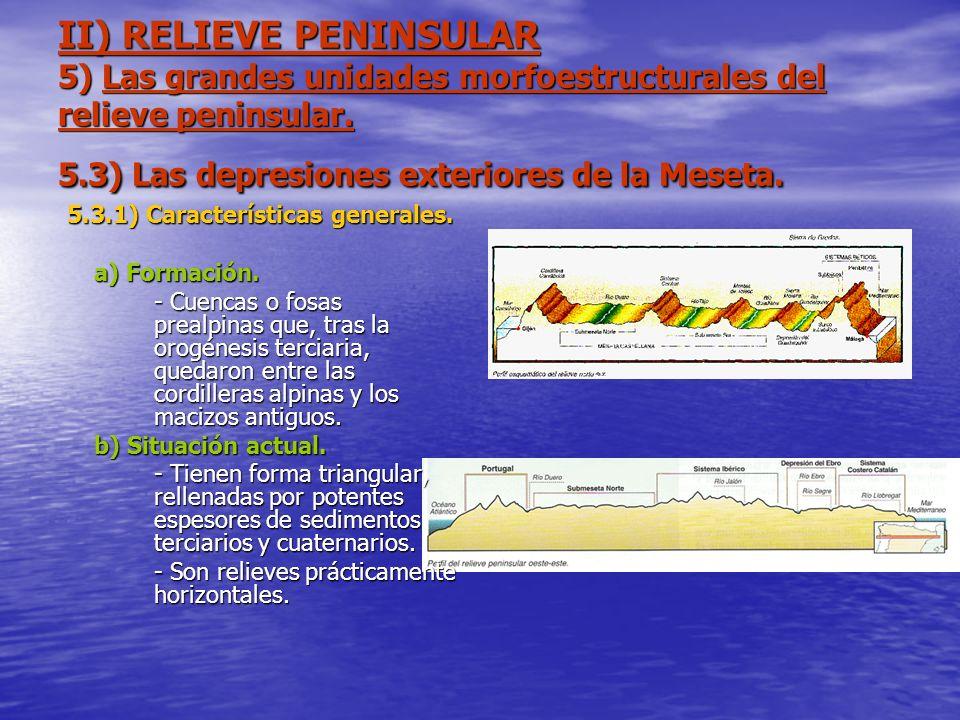 5.3.1) Características generales.