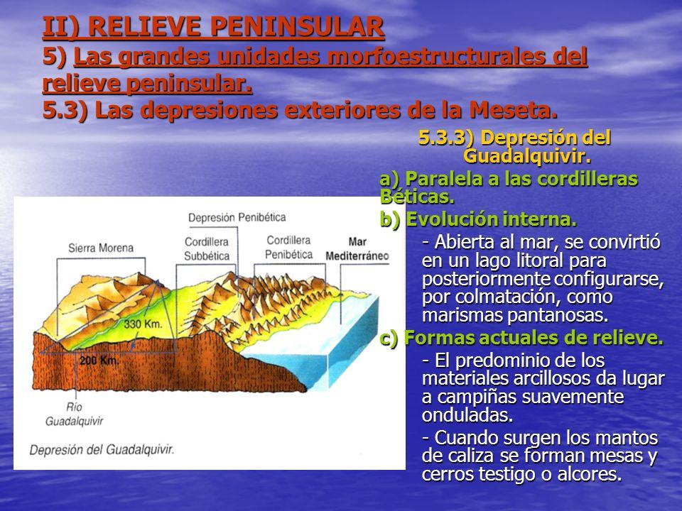 5.3.3) Depresión del Guadalquivir.
