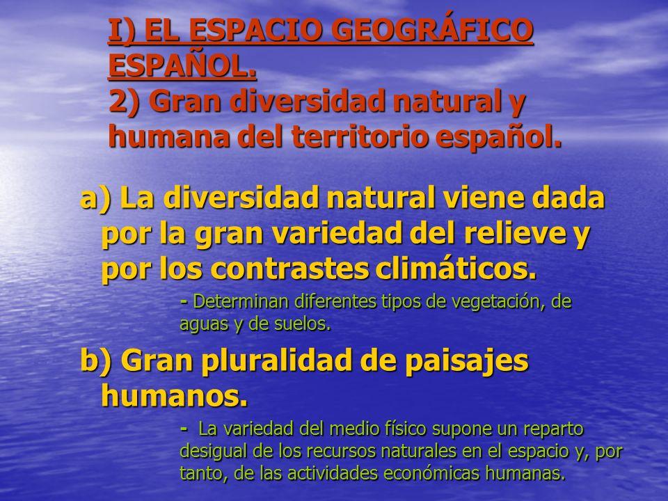 b) Gran pluralidad de paisajes humanos.