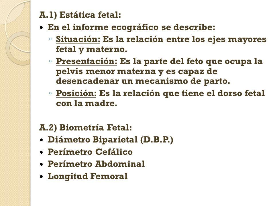 A.1) Estática fetal: En el informe ecográfico se describe: Situación: Es la relación entre los ejes mayores fetal y materno.