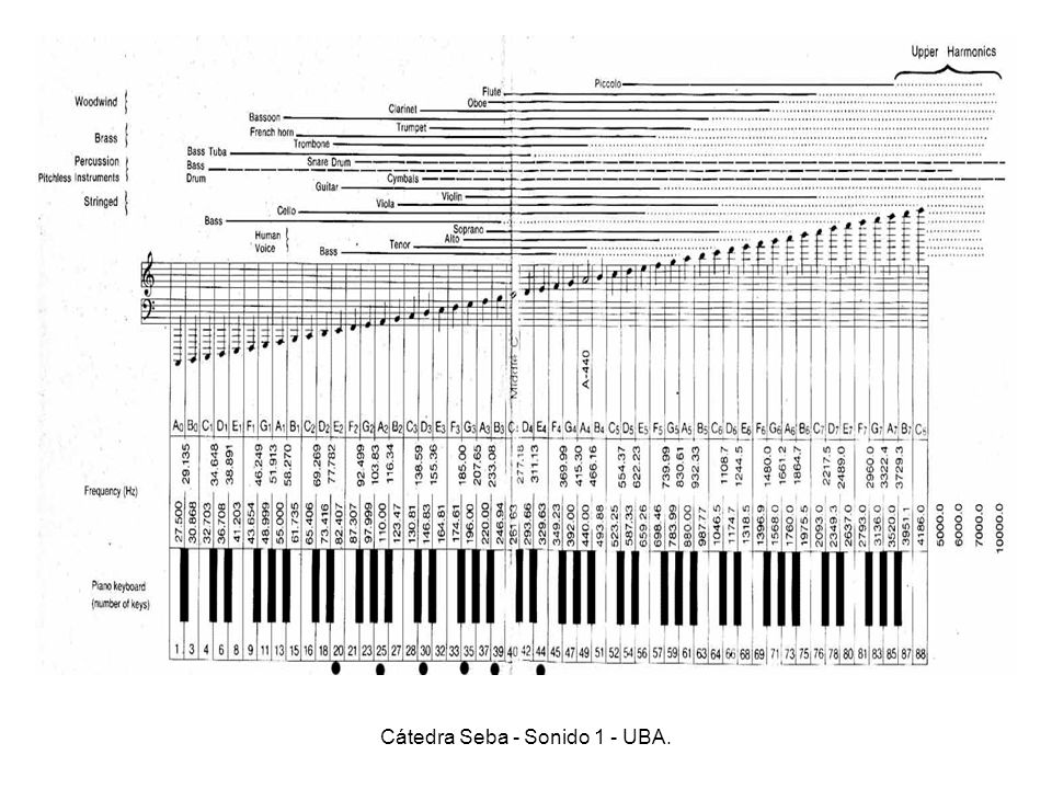 Cátedra Seba - Sonido 1 - UBA.