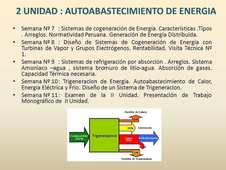 2 UNIDAD : AUTOABASTECIMIENTO DE ENERGIA
