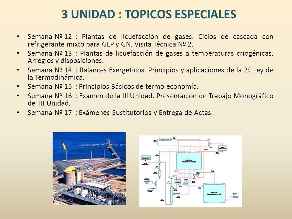 3 UNIDAD : TOPICOS ESPECIALES