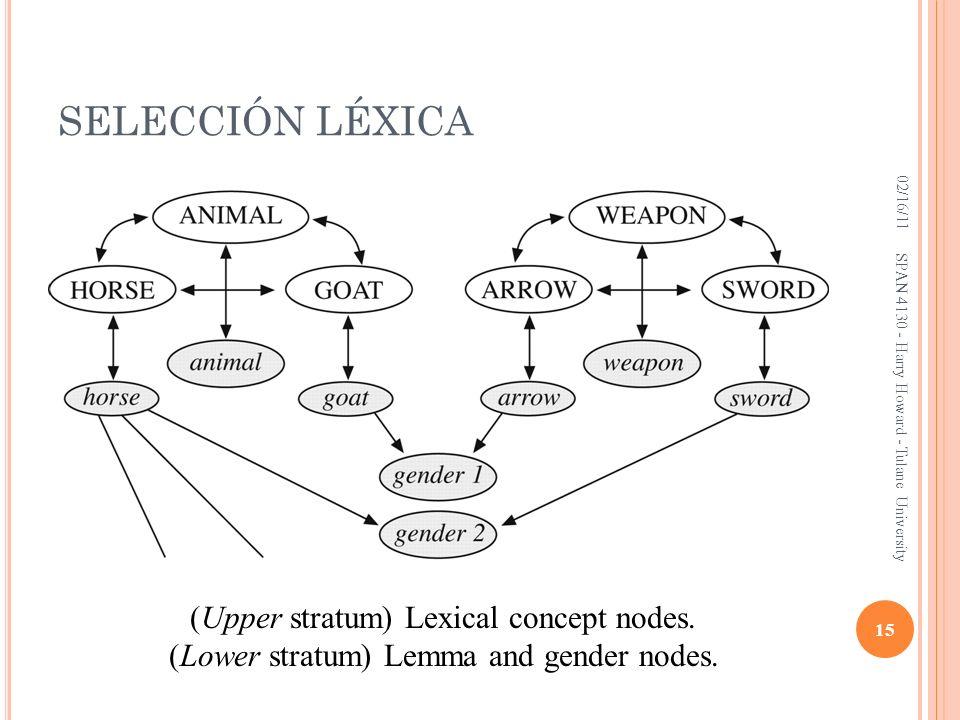 SELECCIÓN LÉXICA (Upper stratum) Lexical concept nodes.