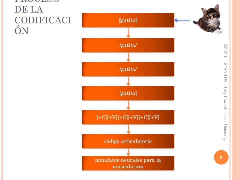 EL PROCESO DE LA CODIFICACIÓN