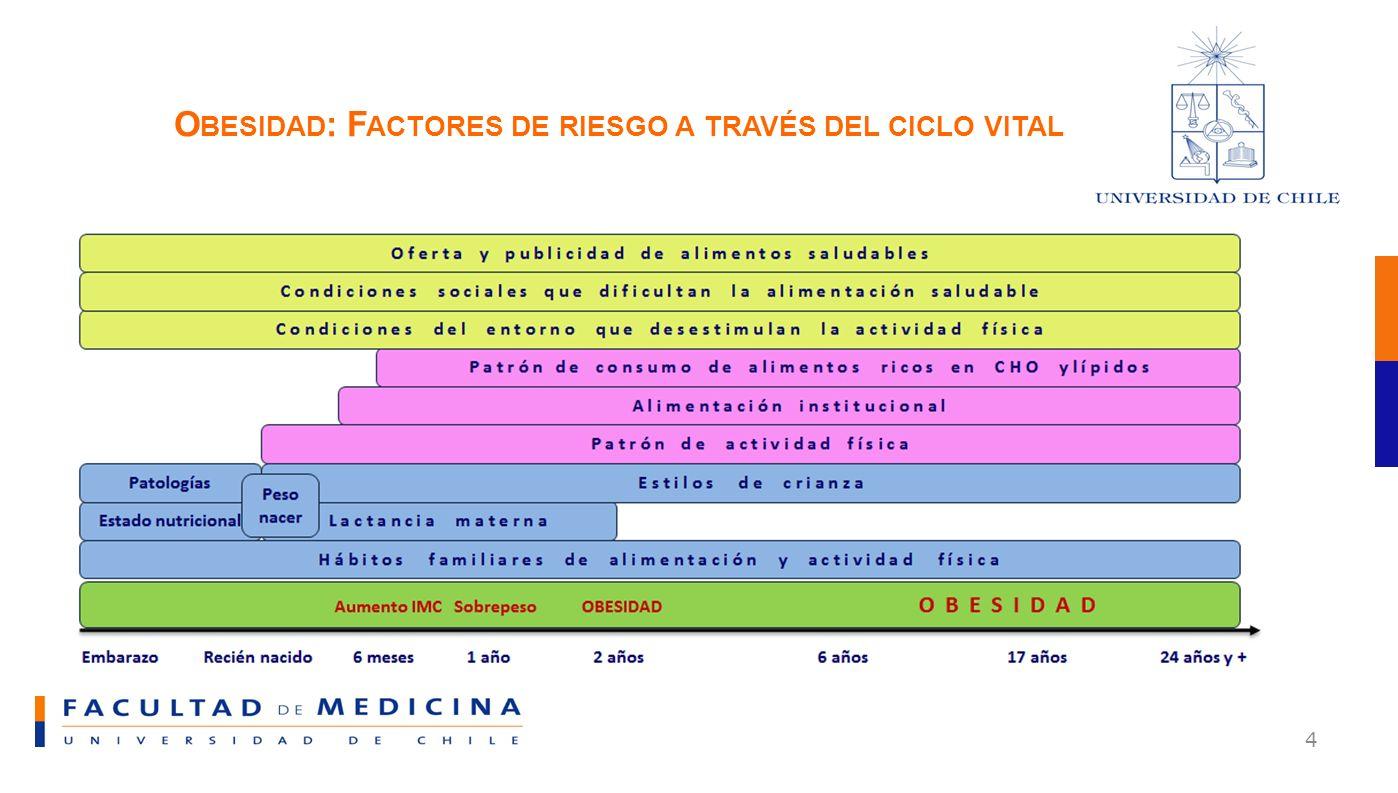 Obesidad: Factores de riesgo a través del ciclo vital