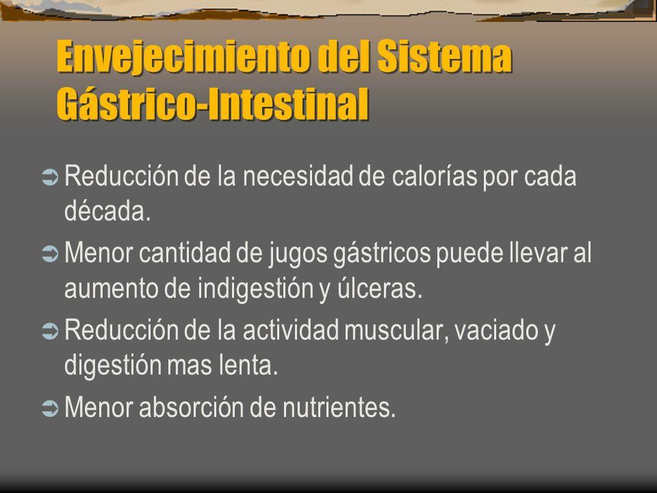 Envejecimiento del Sistema Gástrico-Intestinal
