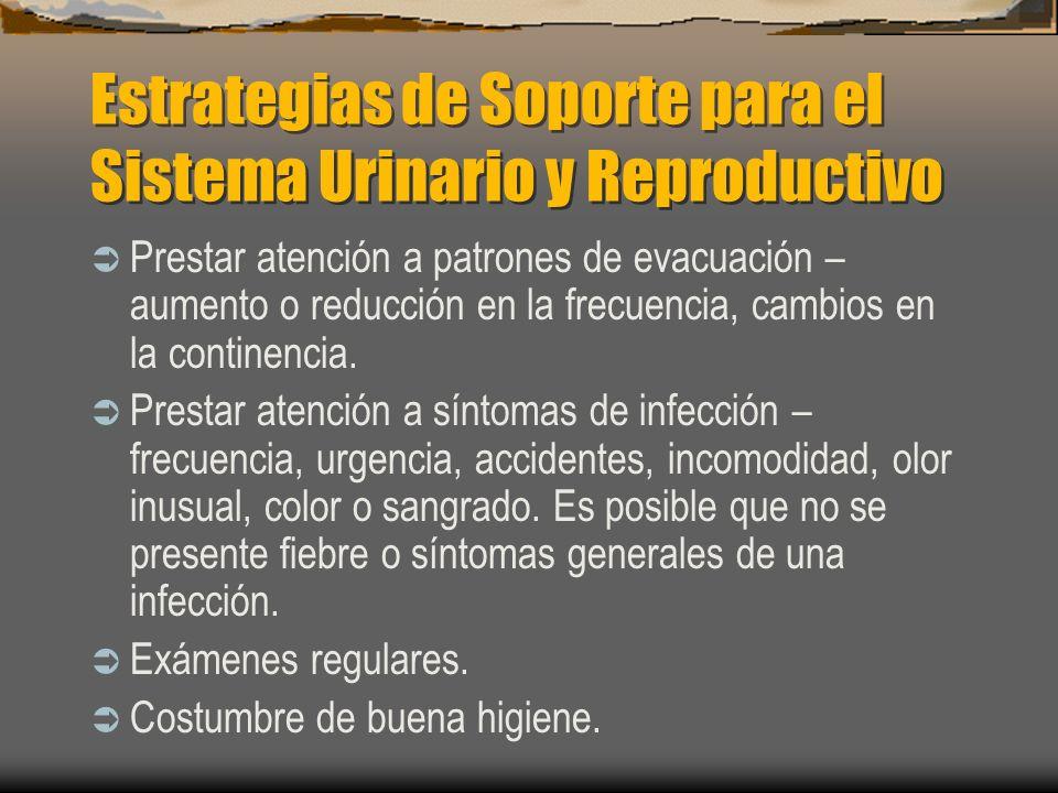 Estrategias de Soporte para el Sistema Urinario y Reproductivo