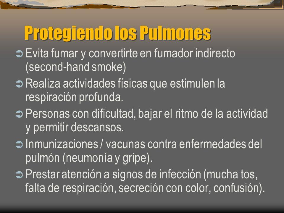Protegiendo los Pulmones