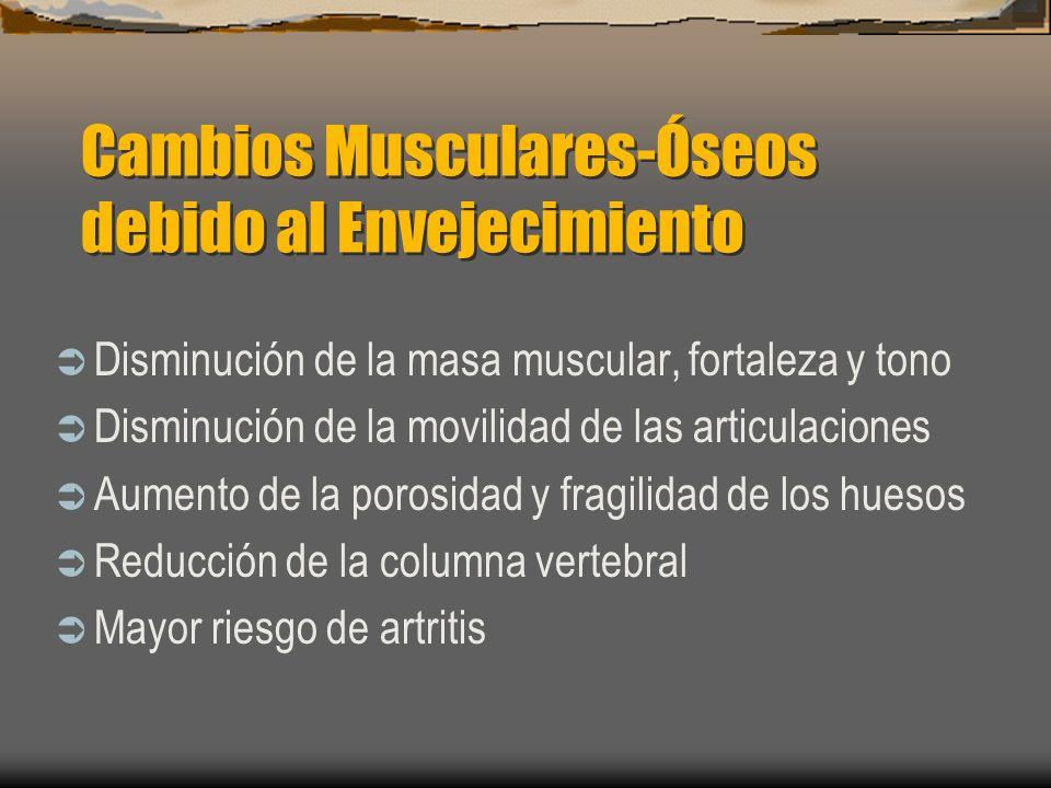 Cambios Musculares-Óseos debido al Envejecimiento