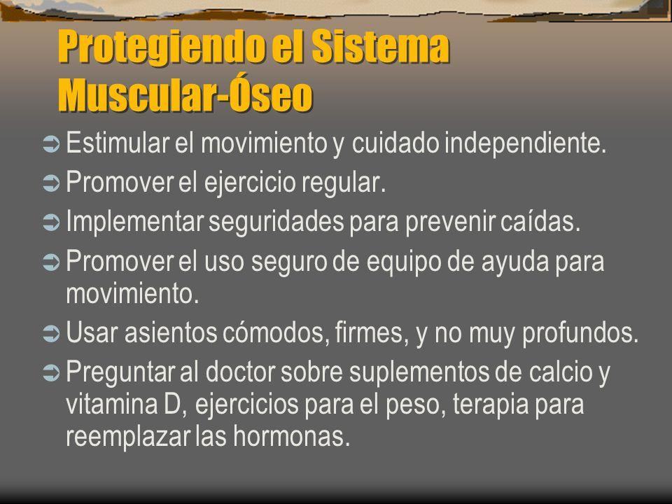 Protegiendo el Sistema Muscular-Óseo