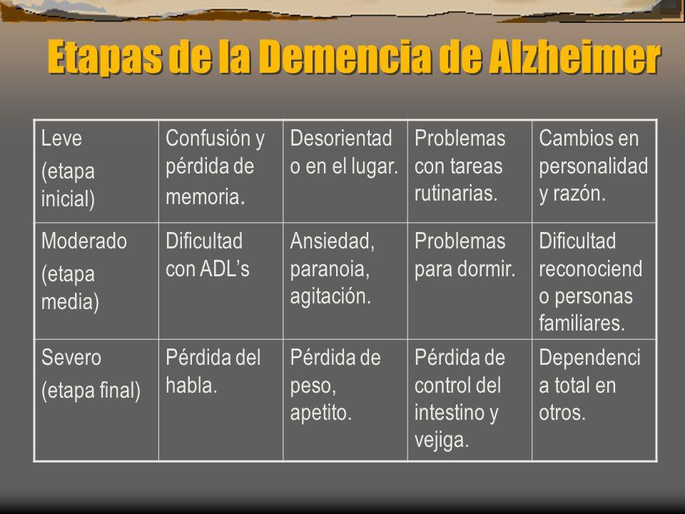 Etapas de la Demencia de Alzheimer