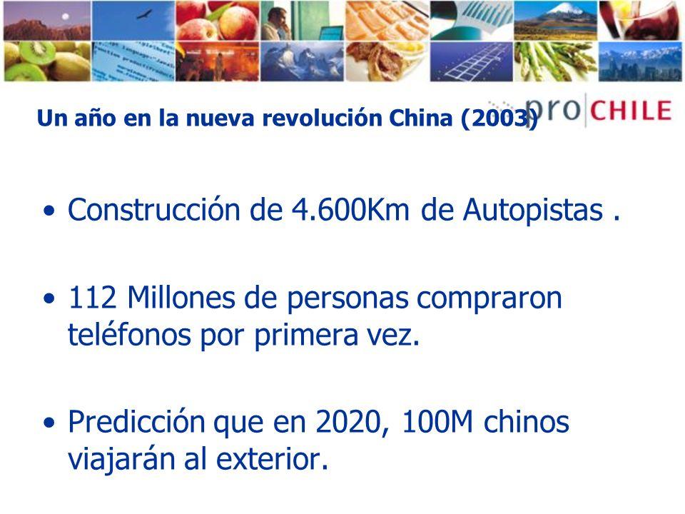 Un año en la nueva revolución China (2003)
