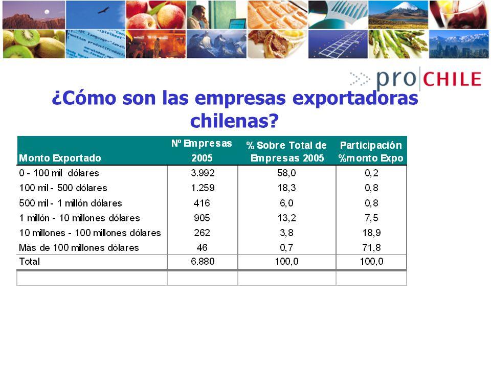 ¿Cómo son las empresas exportadoras chilenas