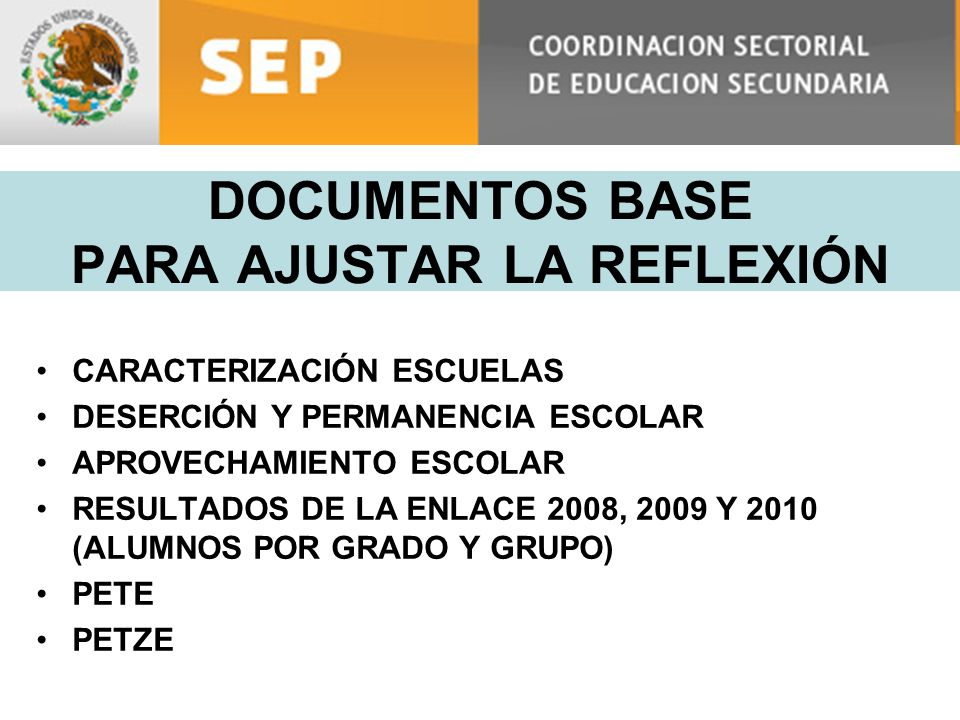 DOCUMENTOS BASE PARA AJUSTAR LA REFLEXIÓN