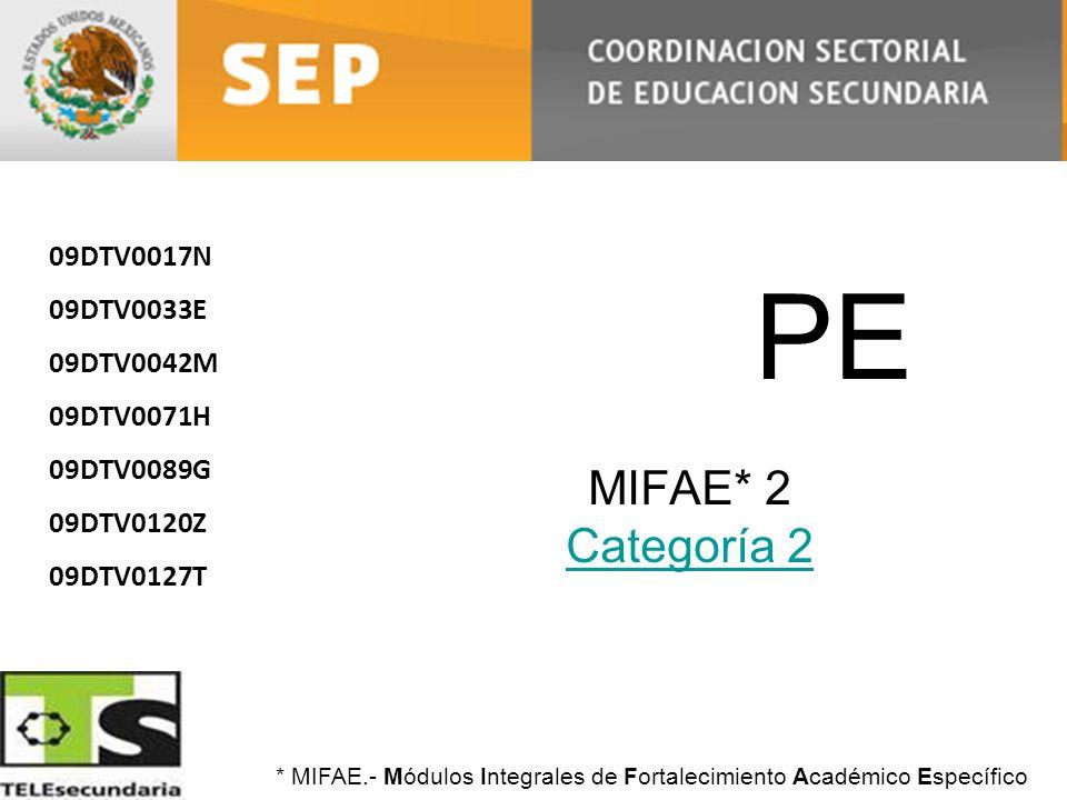 PE MIFAE* 2 Categoría 2 09DTV0017N 09DTV0033E 09DTV0042M 09DTV0071H