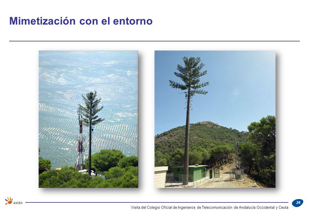 Mimetización con el entorno