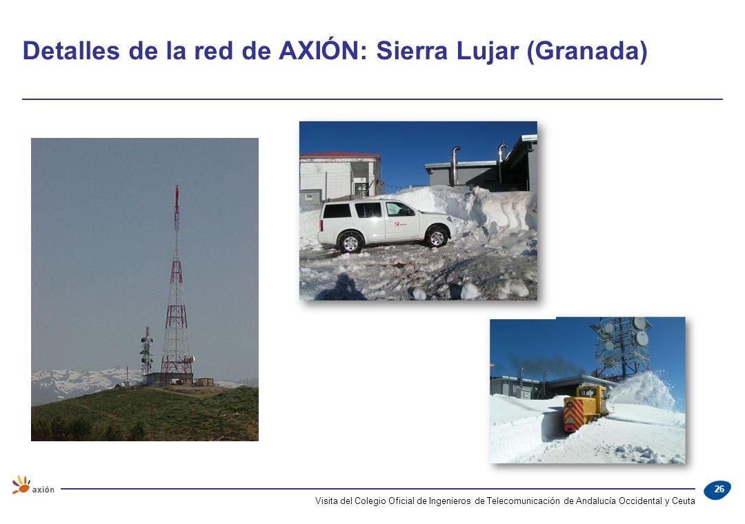 Detalles de la red de AXIÓN: Sierra Lujar (Granada)