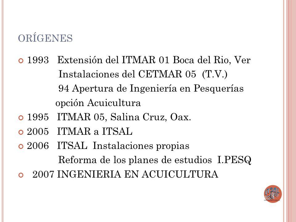 orígenes 1993 Extensión del ITMAR 01 Boca del Rio, Ver