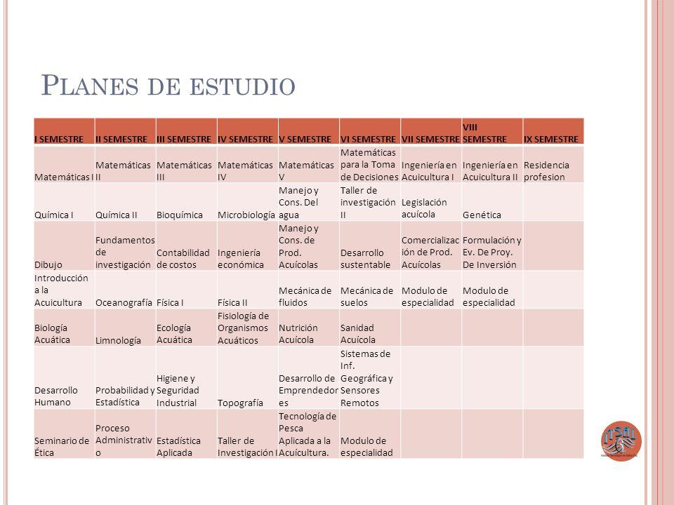Planes de estudio I SEMESTRE II SEMESTRE III SEMESTRE IV SEMESTRE