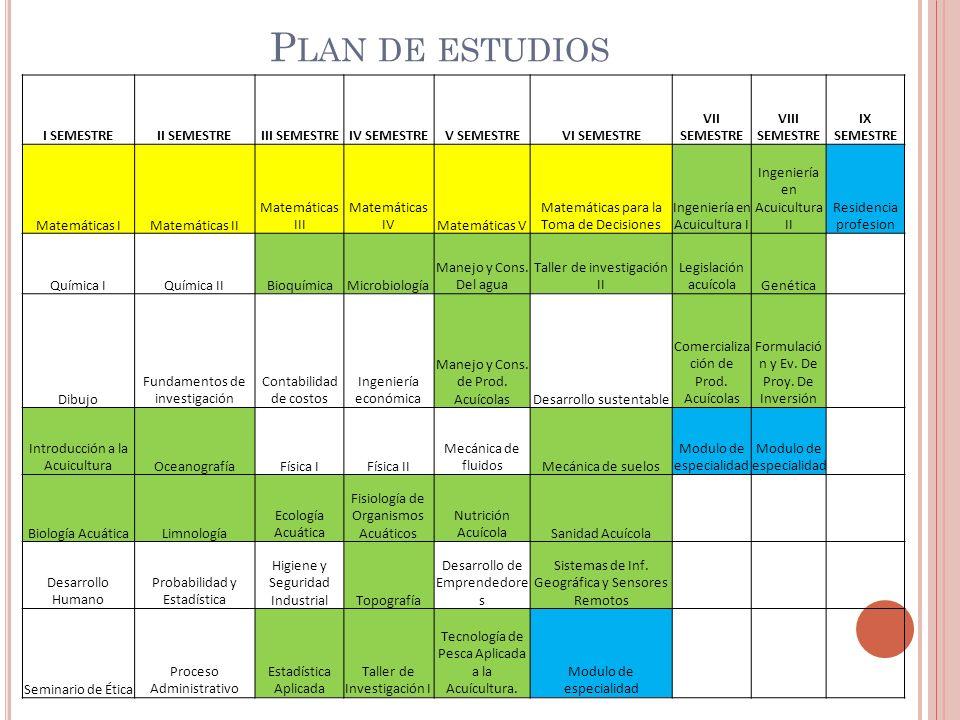 Plan de estudios I SEMESTRE II SEMESTRE III SEMESTRE IV SEMESTRE
