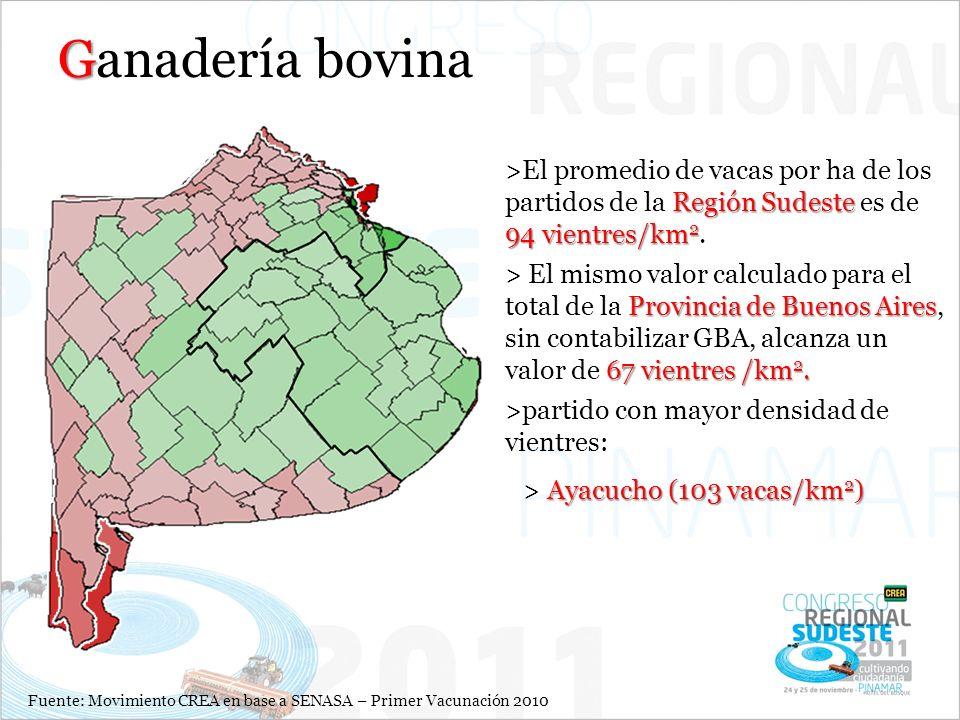 Ganadería bovina El promedio de vacas por ha de los partidos de la Región Sudeste es de 94 vientres/km2.
