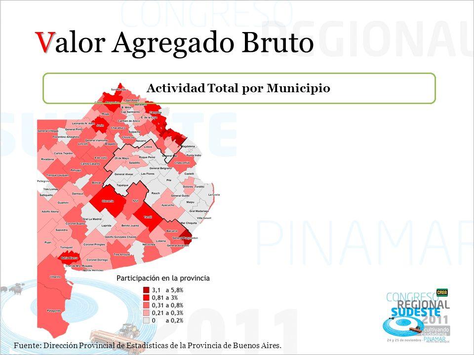 Actividad Total por Municipio