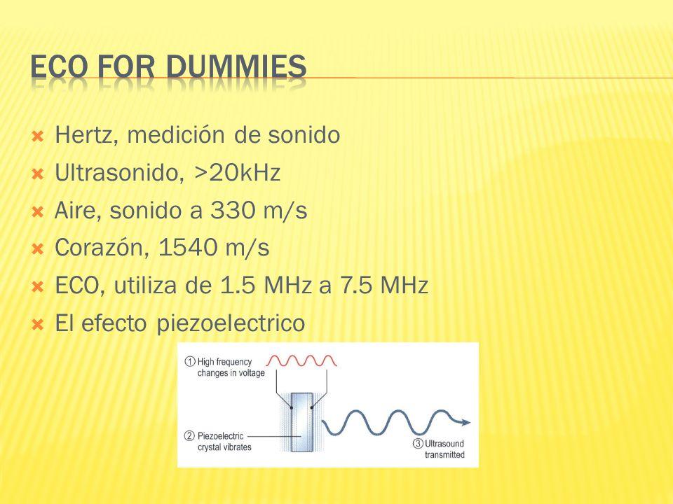 ECO for dummies Hertz, medición de sonido Ultrasonido, >20kHz