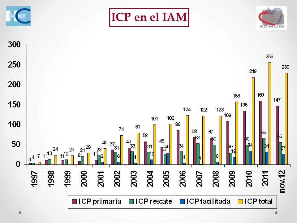 ICP en el IAM