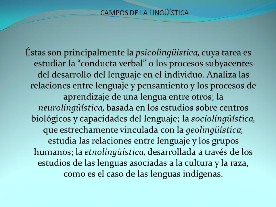 CAMPOS DE LA LINGÜÍSTICA