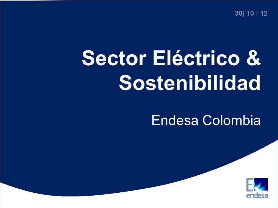 Sector Eléctrico & Sostenibilidad